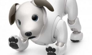 Sony Robot Dog Aibo costará $2,899 en los Estados Unidos