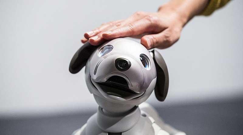 Aibo el perro robot de Sony que se conecta con las emociones humanas